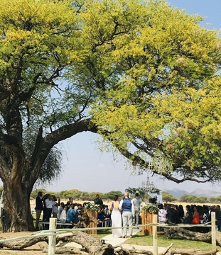 Windhoek Garden Wedding Ceremony