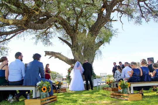 Windhoek Wedding Venue Ceremony Under Trees